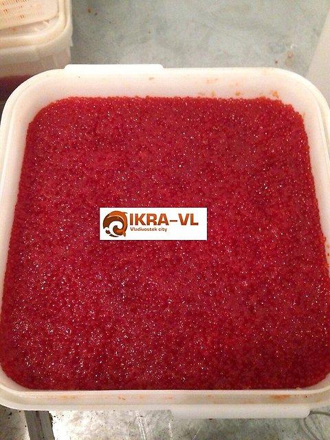 Красная икра с Камчатки и Приморья оптом