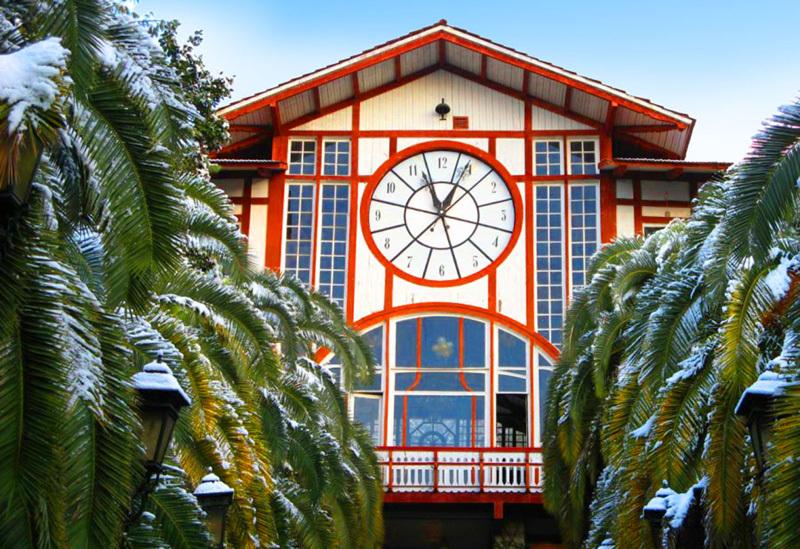 Приглашаем встретить Новый год в Абхазии