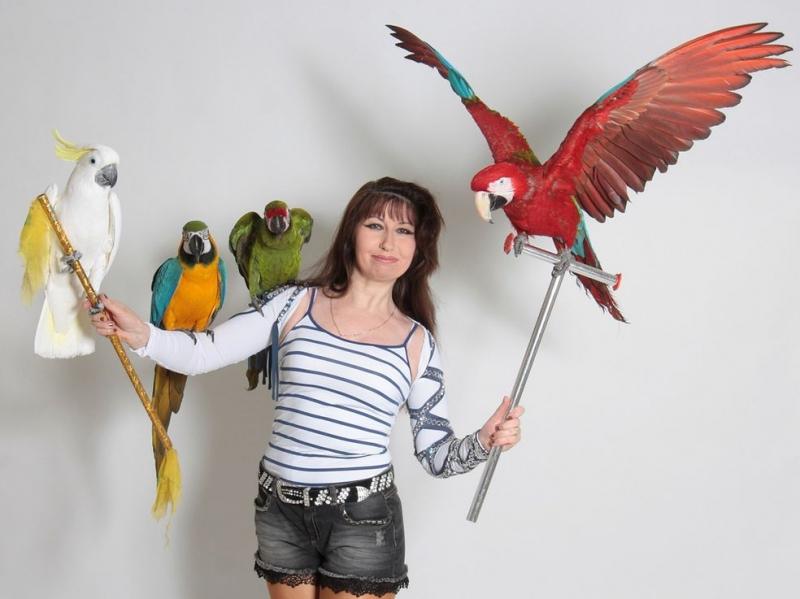 Скидки до 20 на уникальнoе экзотическое Шоу с попугаями