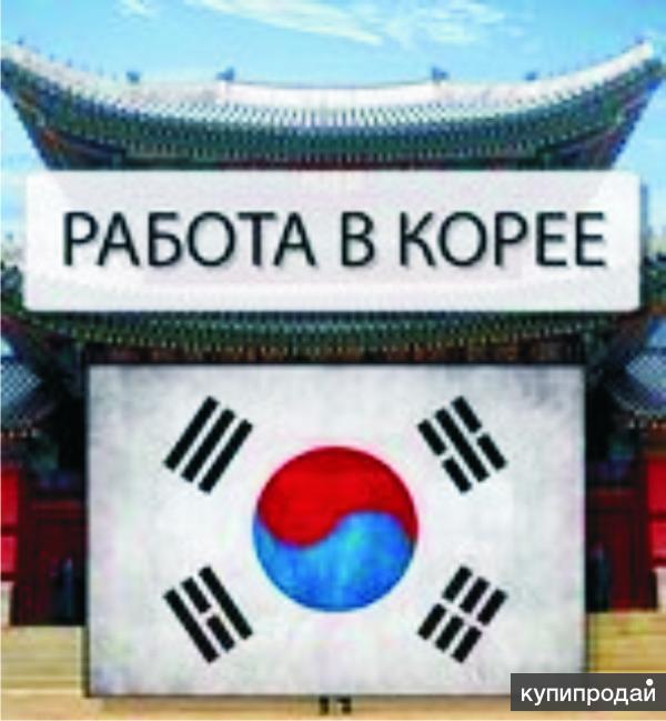 Работа в Южной Корее. ЗП от 2000 у.е. БЕЗ ПРЕДОПЛАТ.