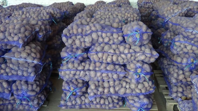 Картофель оптом Уладар калибр 5 цена 11,5 рубкг