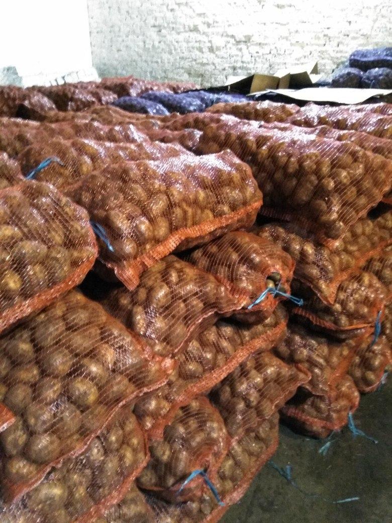 Картофель оптом Невский калибр 5 цена 13,5 рубкг