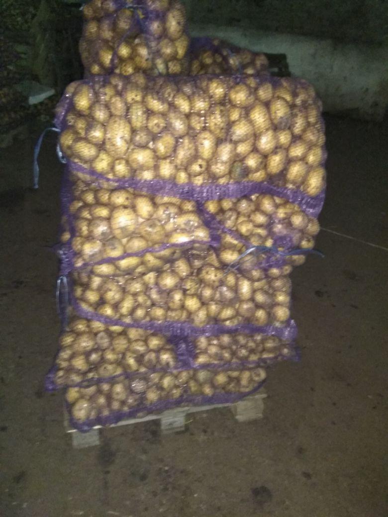 Картофель оптом Наташа калибр 6 цена 11,5 рубкг