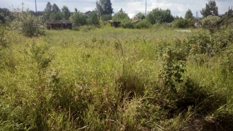 садовый участок ,60 км от Екатеринбурга ,напр.Каменск-Уральский