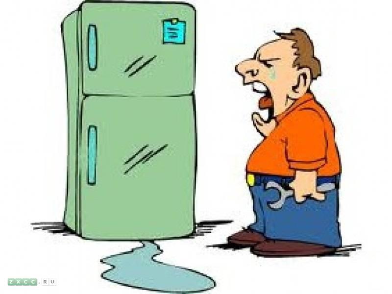Ремонт холодильников в Красногорске
