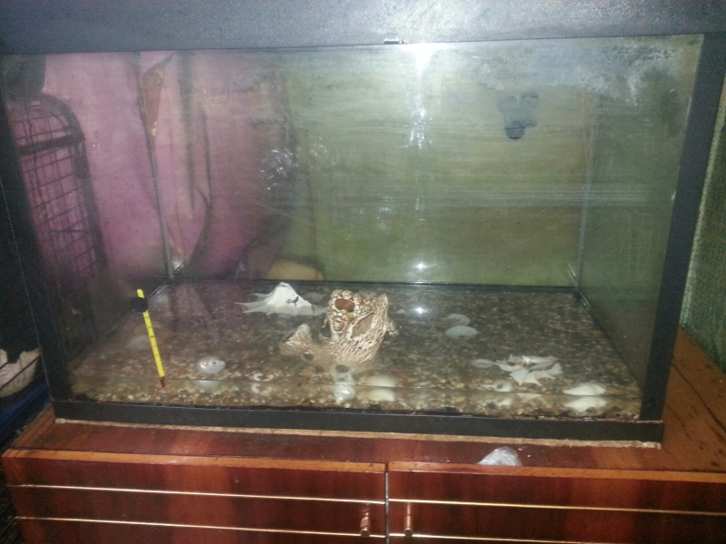 Продаю аквариум на 180 литров